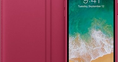 чехол Folio для iPhone X цвет «лесная ягода» 380x200 - Apple iPhone X 64Gb Space gray