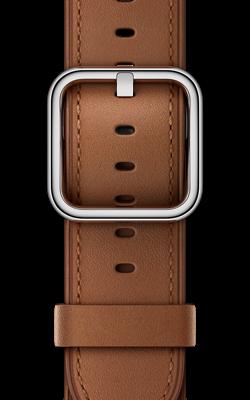 золотисто коричневого цвета с классической пряжкой MPWC2 MPWT2 250x400 - Аксессуары для Apple watch